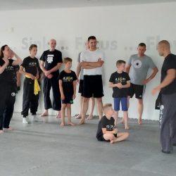 Ouder-Kids Kung Fu Lee Style Internal Martial Arts