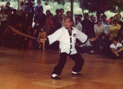 Chee Soo Tai Chi Lee Style Internal Martial Arts