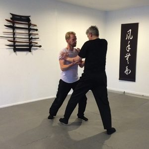 Kung Fu Lee Style Internal Martial Arts