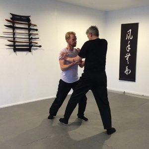 Kung Fu Lee Style Internal Martial Arts