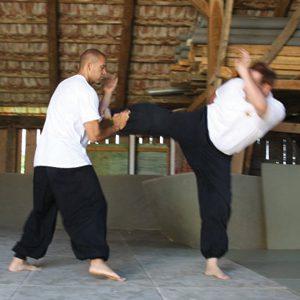 Feng Shou Kung Fu Lee Style Internal Martial Arts