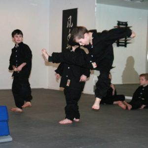 Kids Kung Fu Lee Style Internal Martial Arts