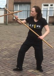 Marjolein van Gaalen Lee Style Internal Martial Arts