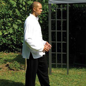 Qigong Lee Style Internal Martial Arts