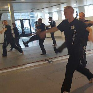 Tai Chi Lee Style Internal Martial Arts